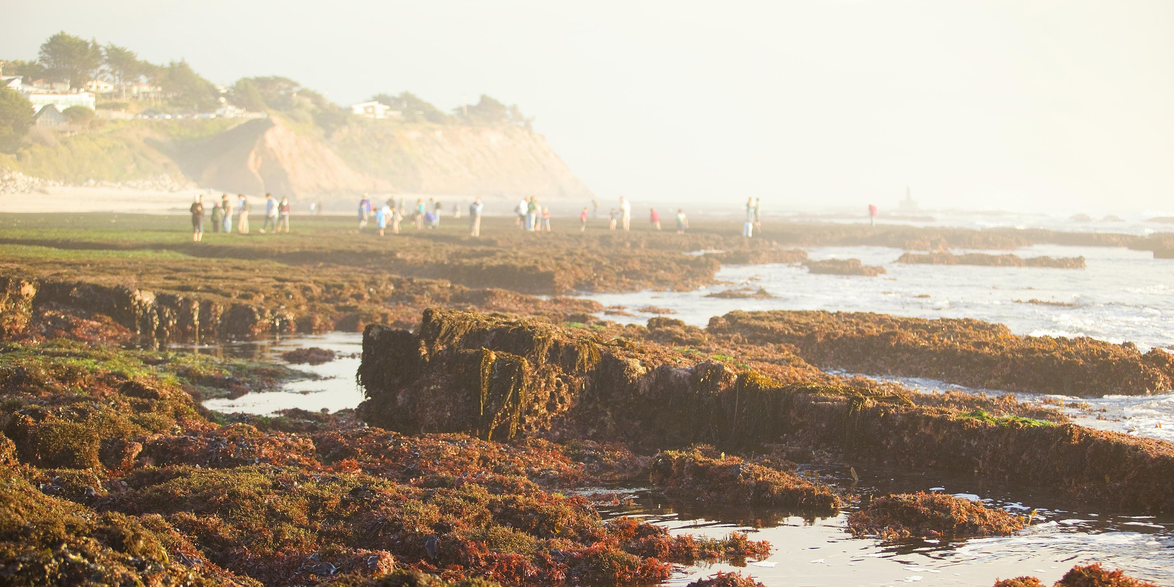 San Mateo County Coast Outdoor Adventures   Via